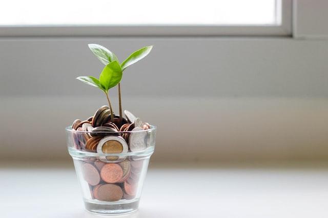 plant in coins de novo banks