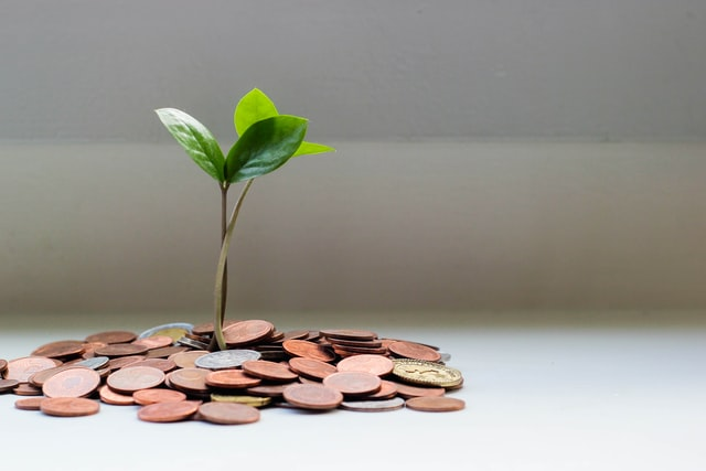 private equity ; seed money concept
